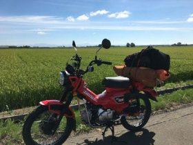 おすすめミニバイクTOP5!実際に乗るユーザーの満足度が高いミニバイクをご紹介!
